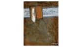 Waxing - oil & bone on canvas - 190 x 240mm