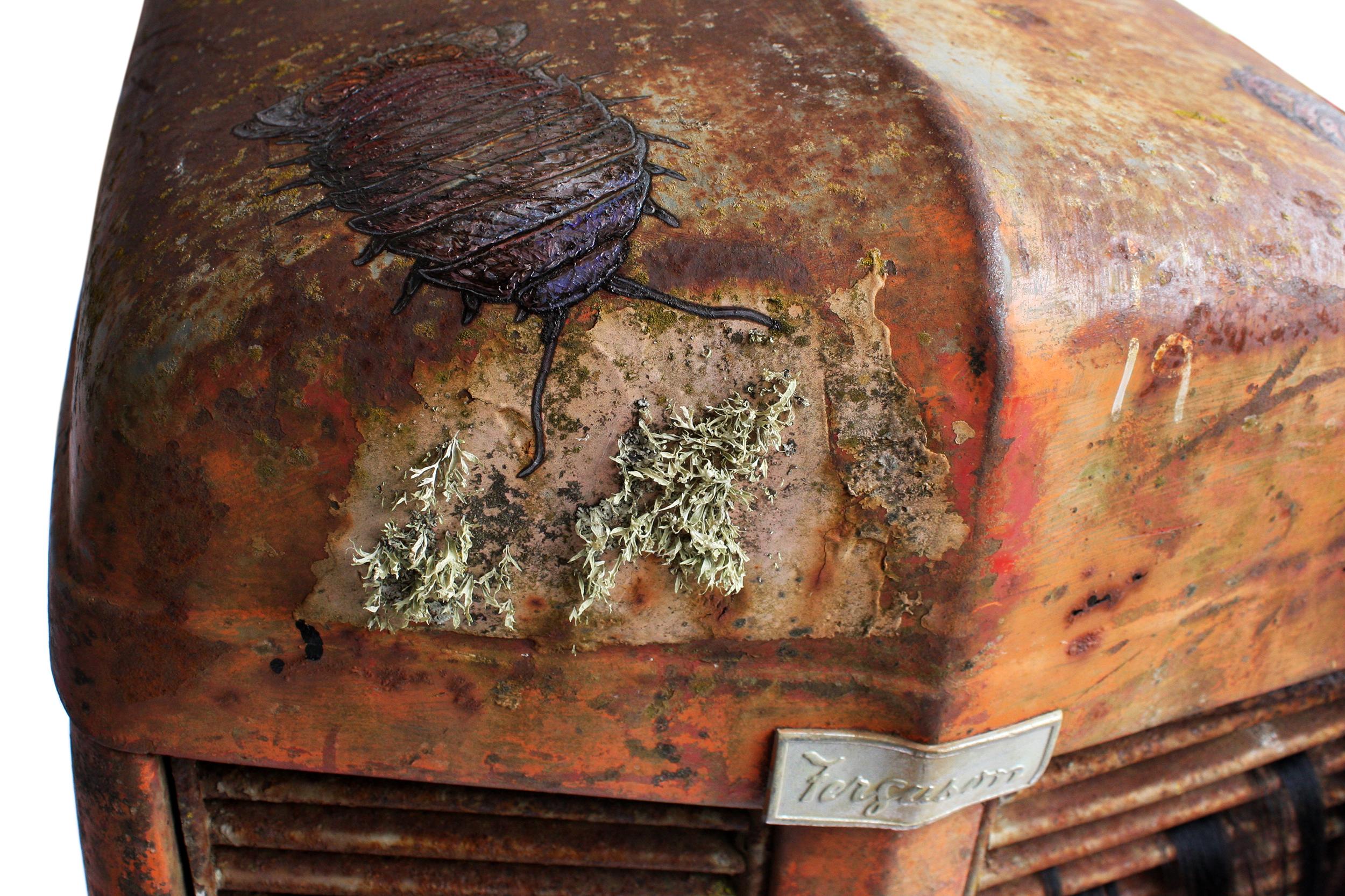 giant isopods crawling over Massey Ferguson tractor bonnet